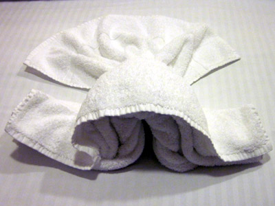 towel animal of the day:  who the heck knows?  no, really.  what is that supposed to be?!