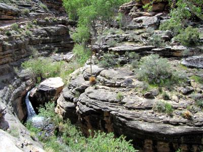 lush cascade area
